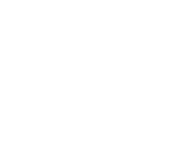 Bicycle Junction Logo - White